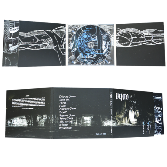 Digipack 6 panels with 1 tray & pocket for booklet